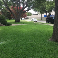 Green Front Lawn